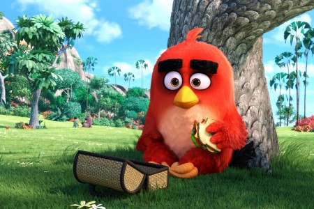 Play free online game Angry Birds - online game